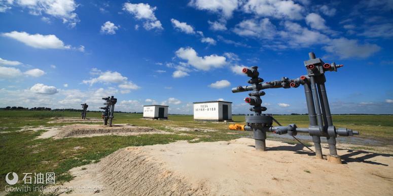 新型数控往复式潜油电泵 颠覆传统抽油机时代