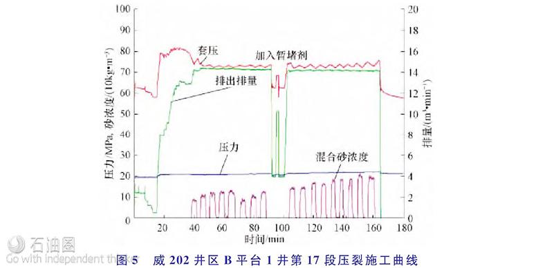 """井下微地震监测技术在页岩气""""井工厂""""压裂中的应用"""