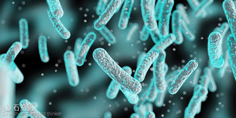 DNA技术帮你寻找下一个油气藏